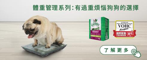 體重管理 有過重煩惱狗狗的選擇